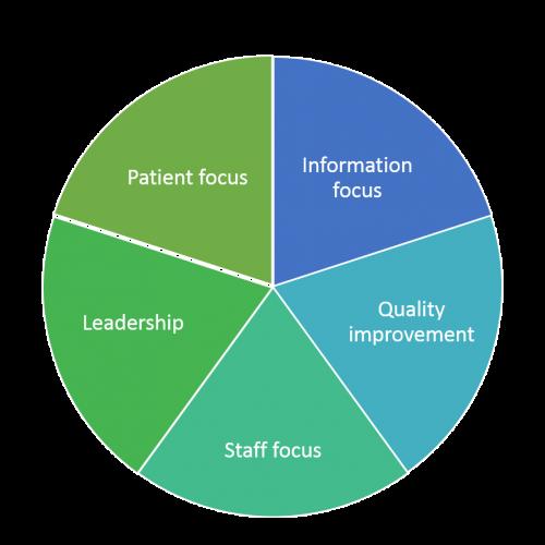 clinical governance pie chart